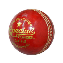 special-ball-school