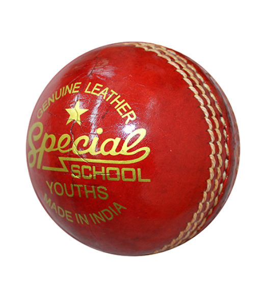 special-ball-school
