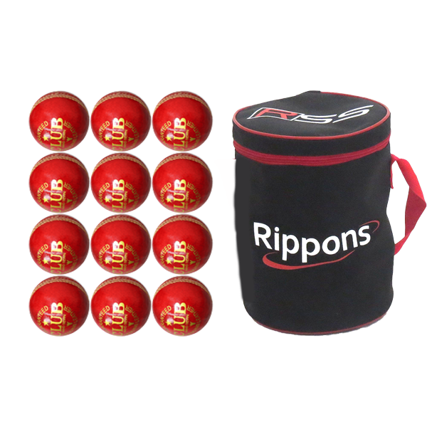 Leather cricket balls and bag