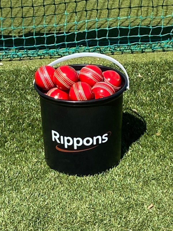 A bucket of cherries