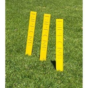 fielding stump